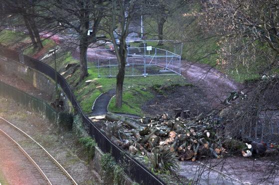 CR0018530  Union Terrace Gardens - Trees cut down.   Picture by Scott Baxter    17/01/2020
