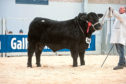 Gordon Barney topped the Aberdeen-Angus trade at 25,000gn.