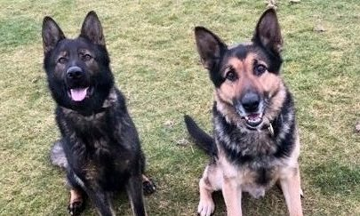 PD Kane has replaced the retiring PD Drax in the north-east police force.