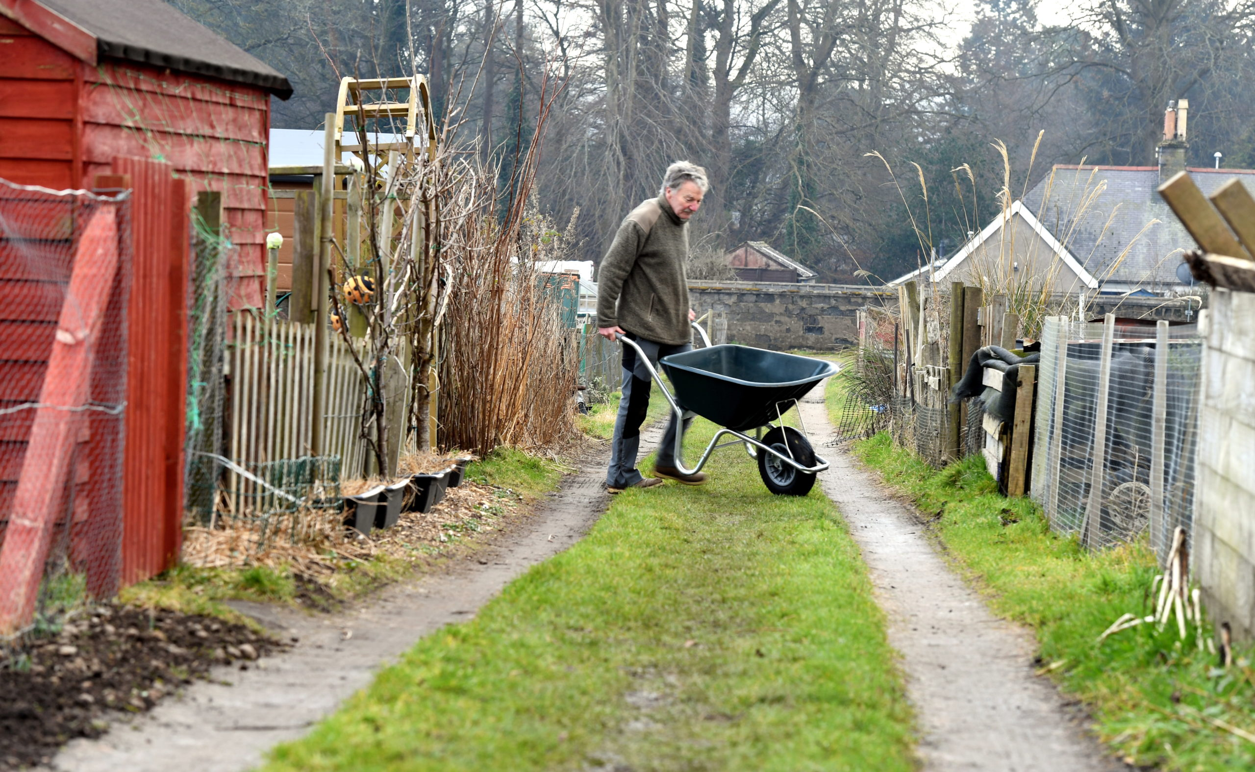 Volunteer co-ordinator, Norman Coutts at the Garthdee Allotments in Aberdeen.        Picture by Kami Thomson