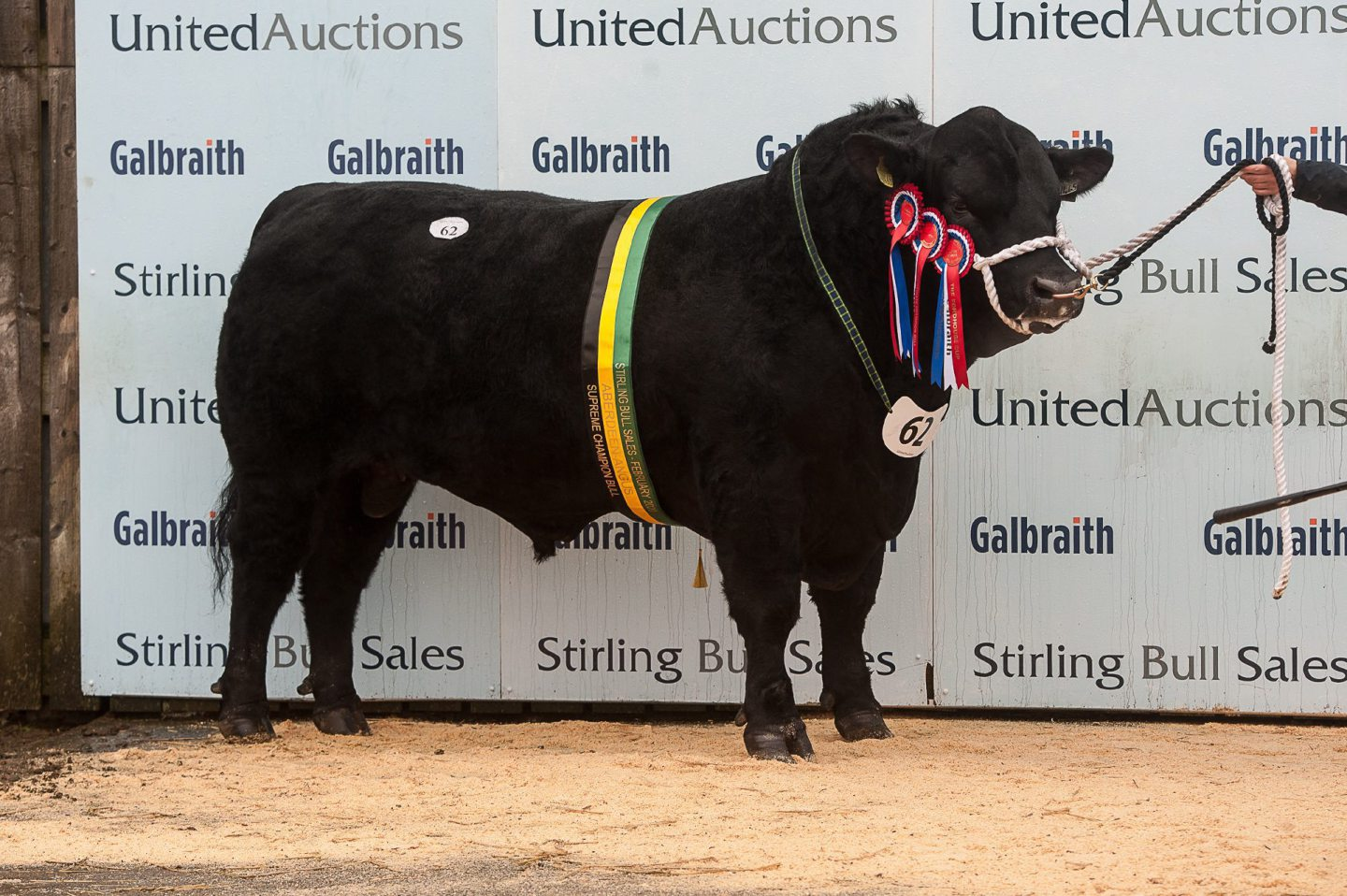 McCornick Pathfinder was overall Aberdeen-Angus champion.