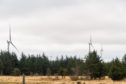 Trees making way for wind farms across the north of Scotland.