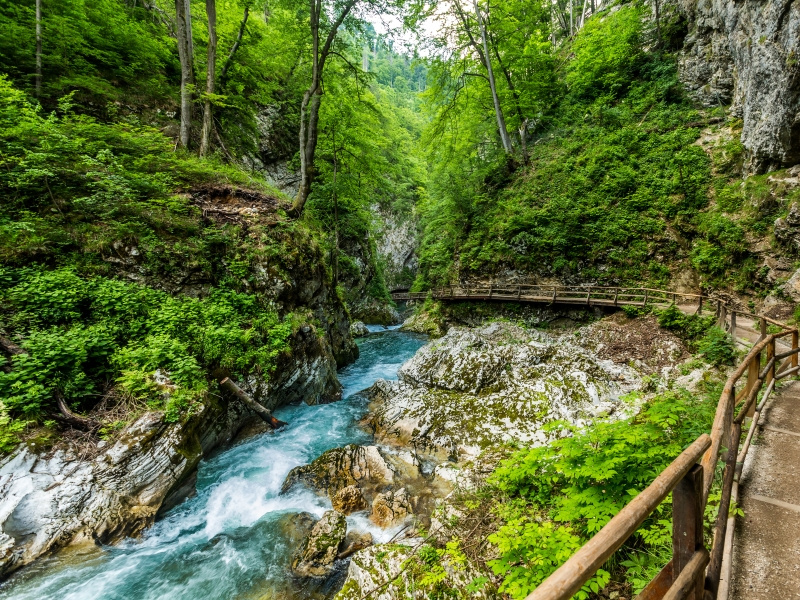 Vintgar Gorge, Slovenia.