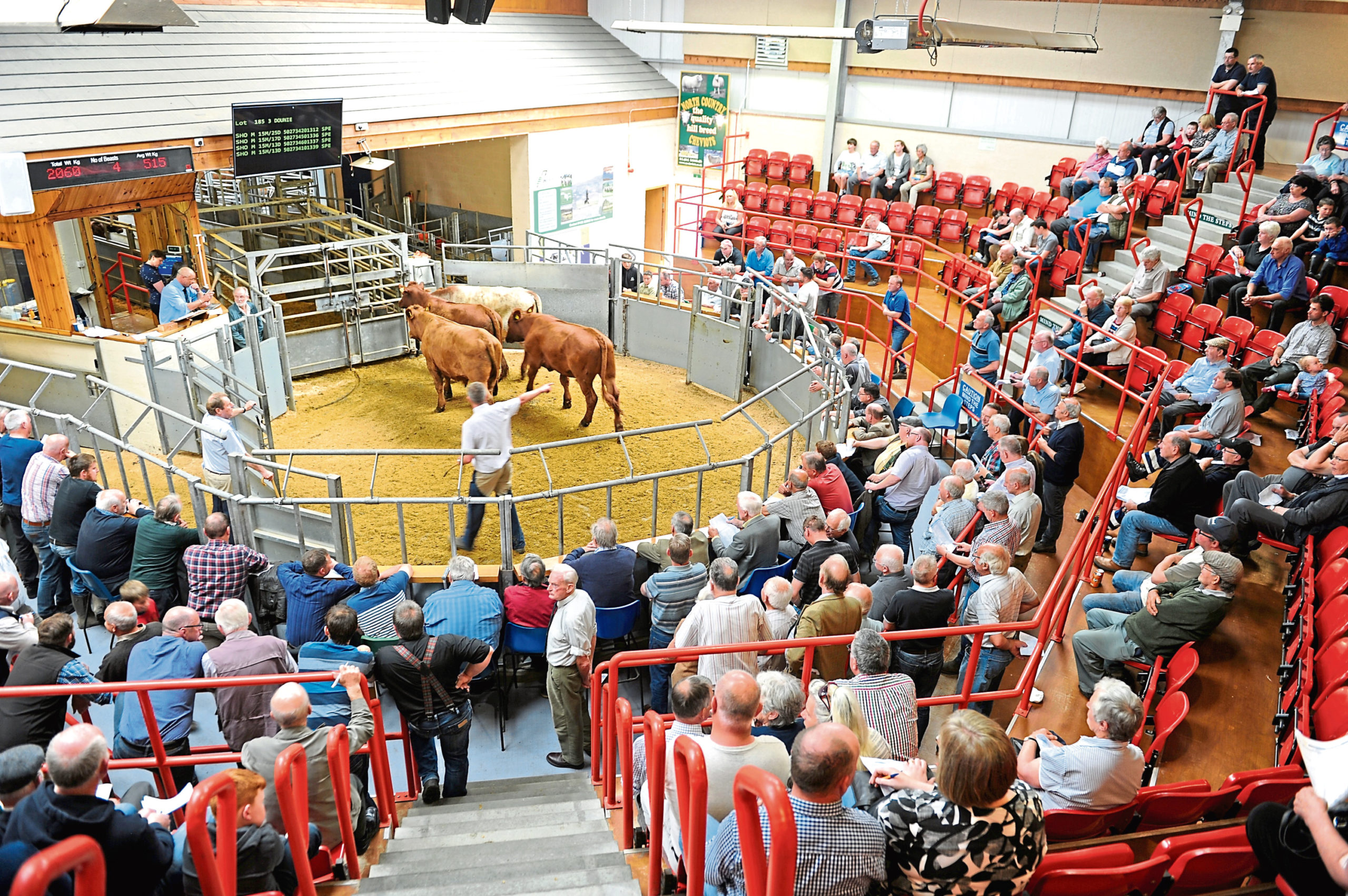 Dingwall and Highland Marts says it is open for business.