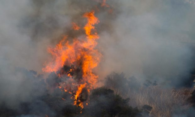 Wildfire on the hillside by the A97, between  Lumsden and  Rhynie Aberdeenshire.