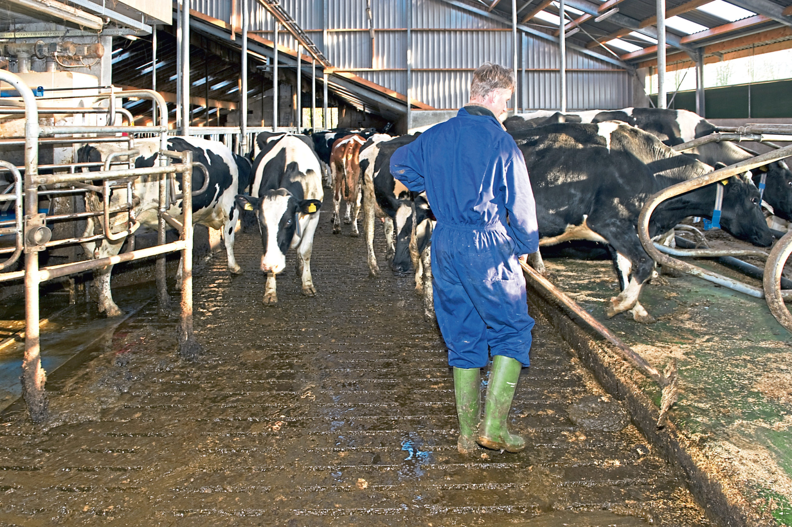 Dairy farmers are encouraged to keep filling in the survey.