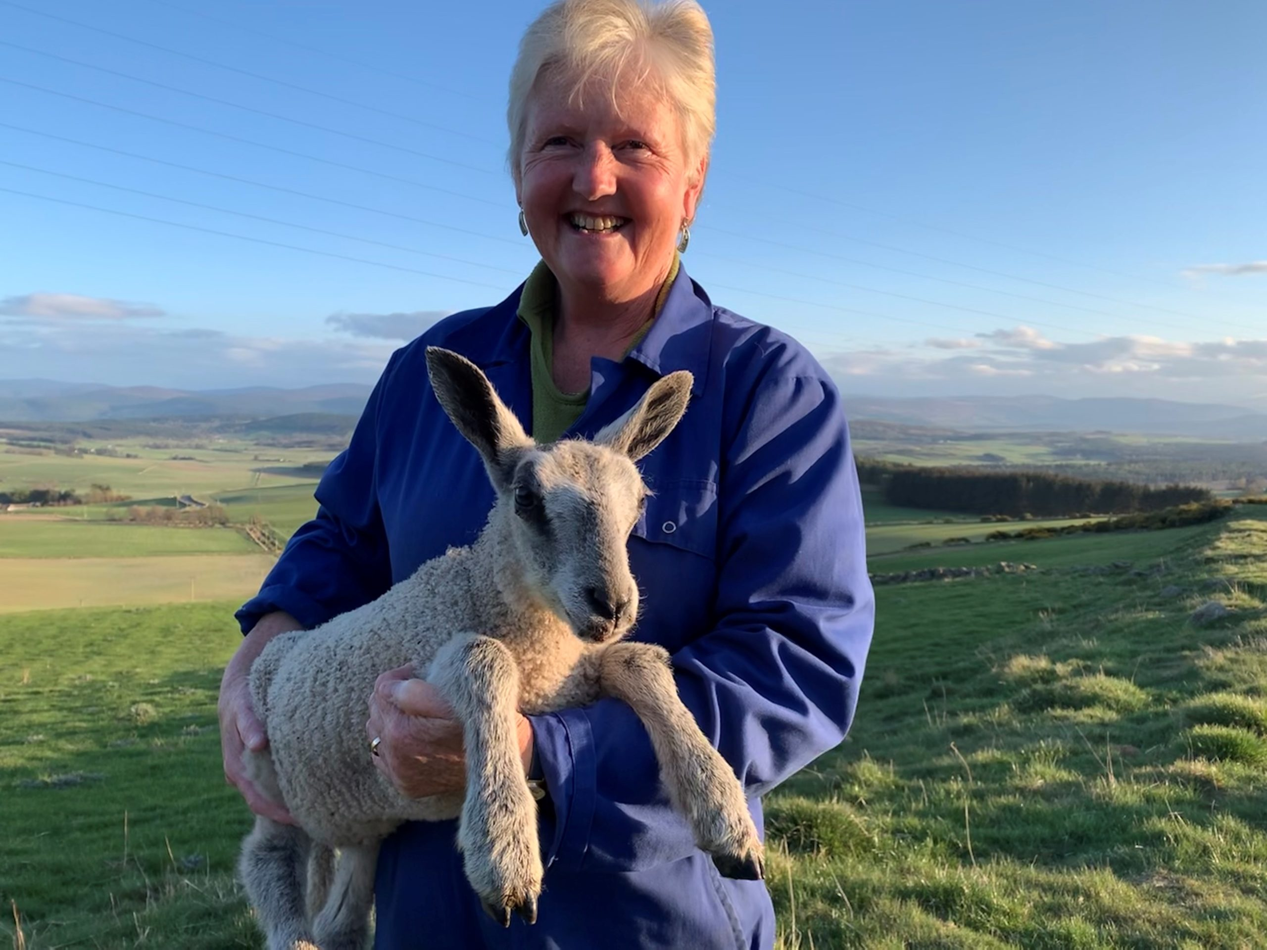 Alison Ross with one of her lambs