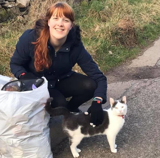 Residents have compiled a selection of photos they have with the wandering cat.