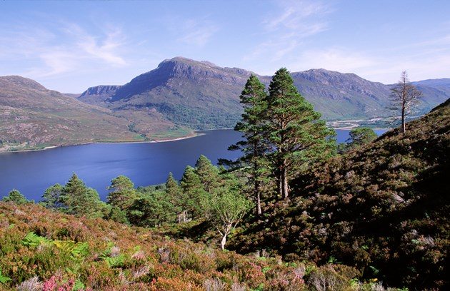 Beinn Eighe Nature Reserve in Ross-shire