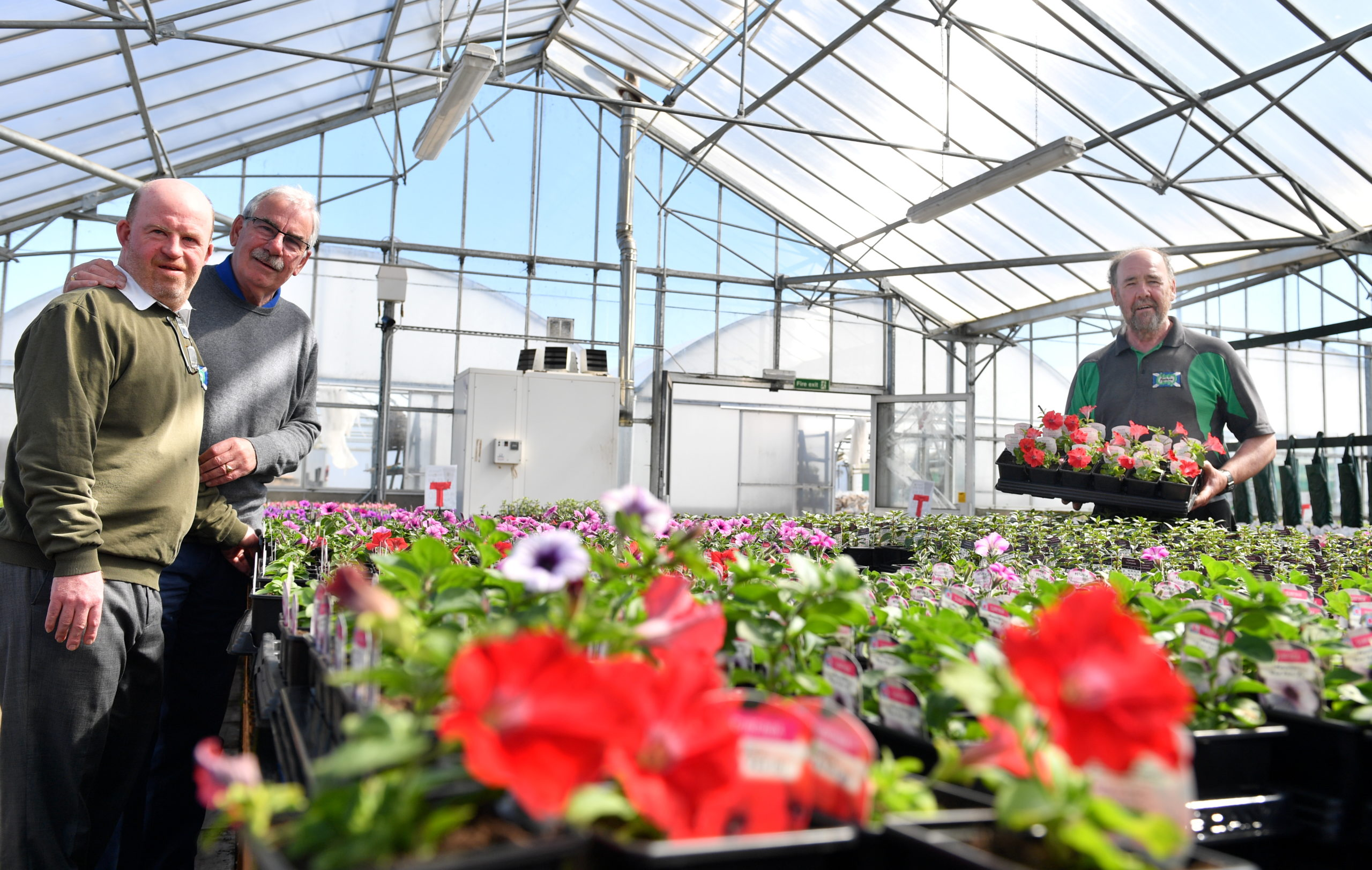 L-R: Andrew with his father Alan Milton in the greenhouse at Foxlane and Foxlane owner Gordon Henderson: Picture by Kami Thomson