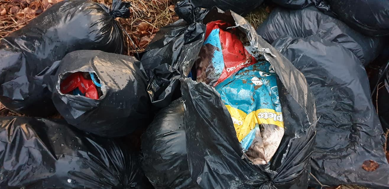 Fly-tipping at Clootie Well