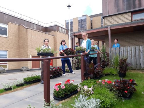 Staff at Raigmore Hospital welcome generous donation of plants from Inverness Botanic Gardens.