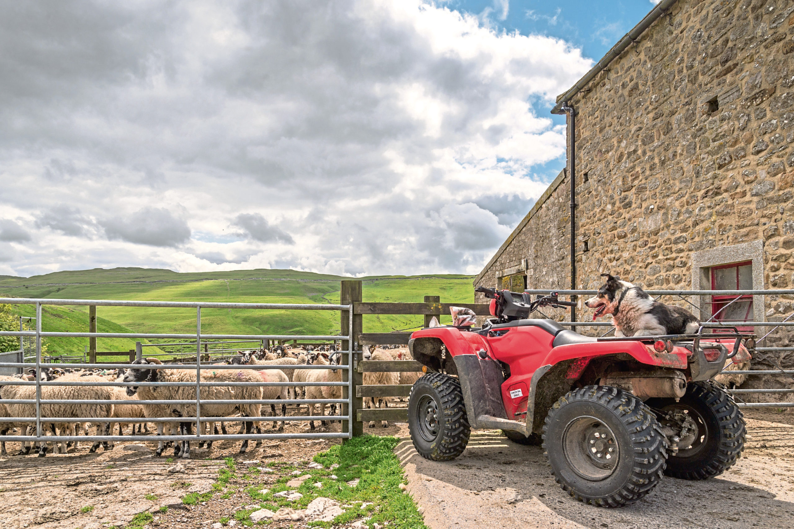 A survey found 71% of respondents believe farmers are doing a good job producing food during the coronavirus pandemic.