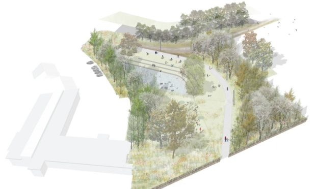 An artists impression of the planned woodland path at Foresterhill.