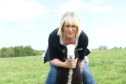 Gizmo the lamb and Sandra Bolton. Picture by Paul Glendell