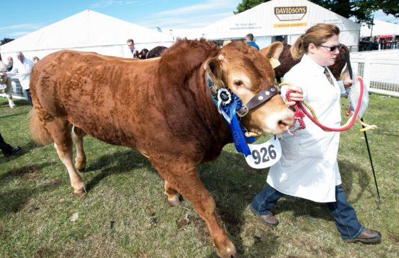 The Royal Highland Show in 2018