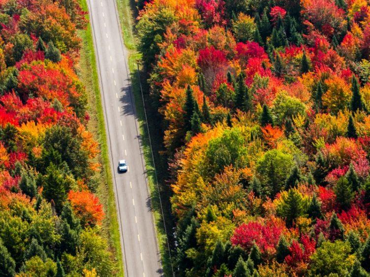 Fall Canada