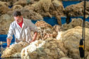 Around nine million kg of unsold British wool has been left from the 2019-20 clip of 27m kg.