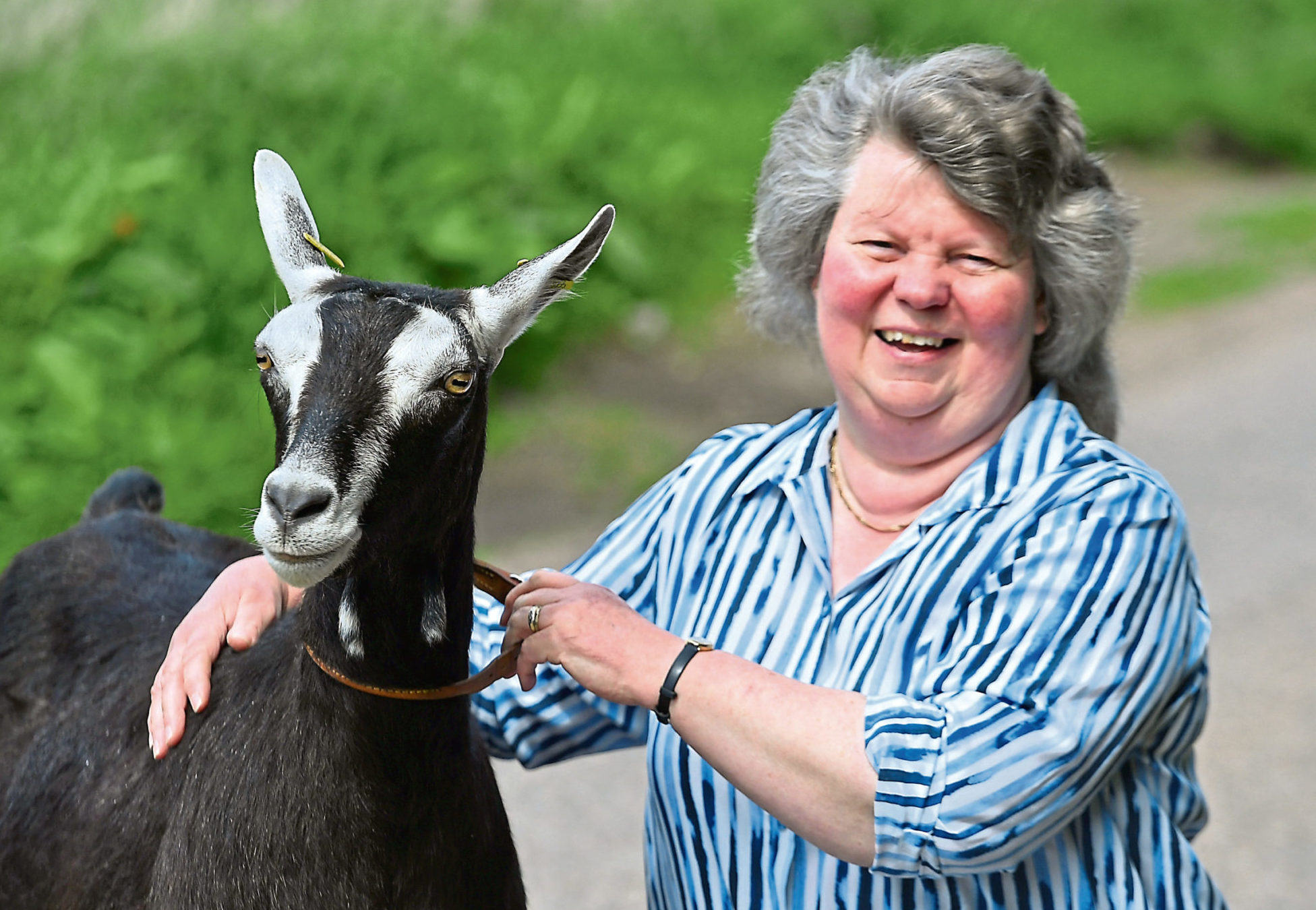 Agnes Aitken will be judging the goats section at the Scottish Agricultural Show. Picture by Chris Sumner.
