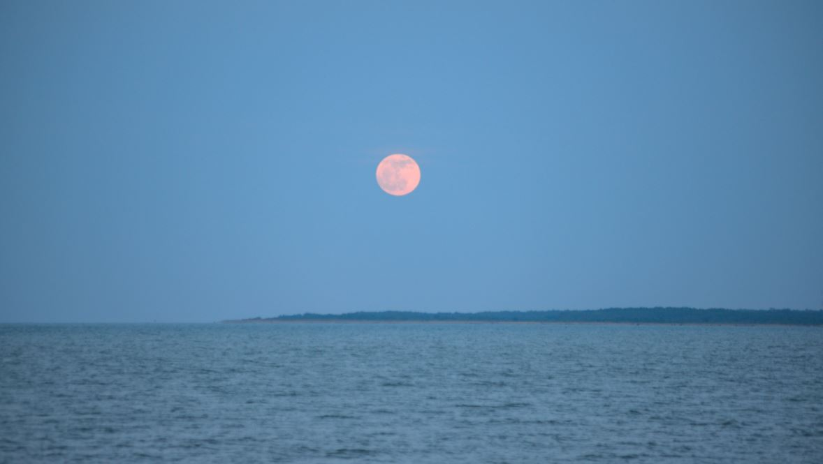A Strawberry Moon will be visible tonight.