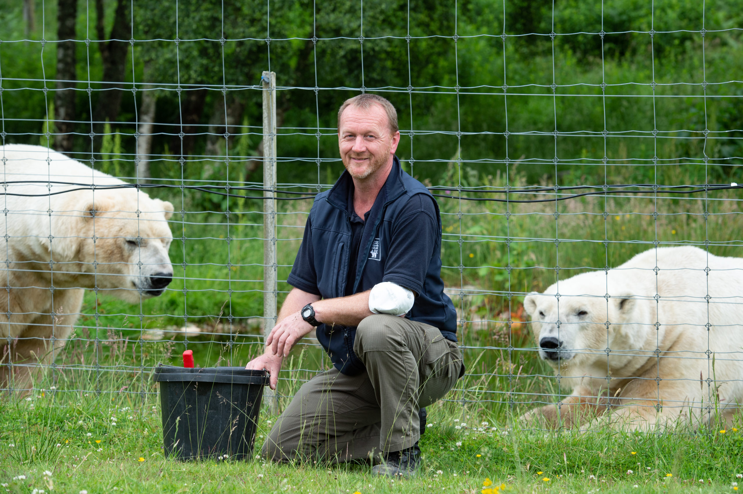 Animal collection manager Keith Gilchrist with polar bears Arktos and Walker at the Highland Wildlife Park. Picture by Jason Hedges