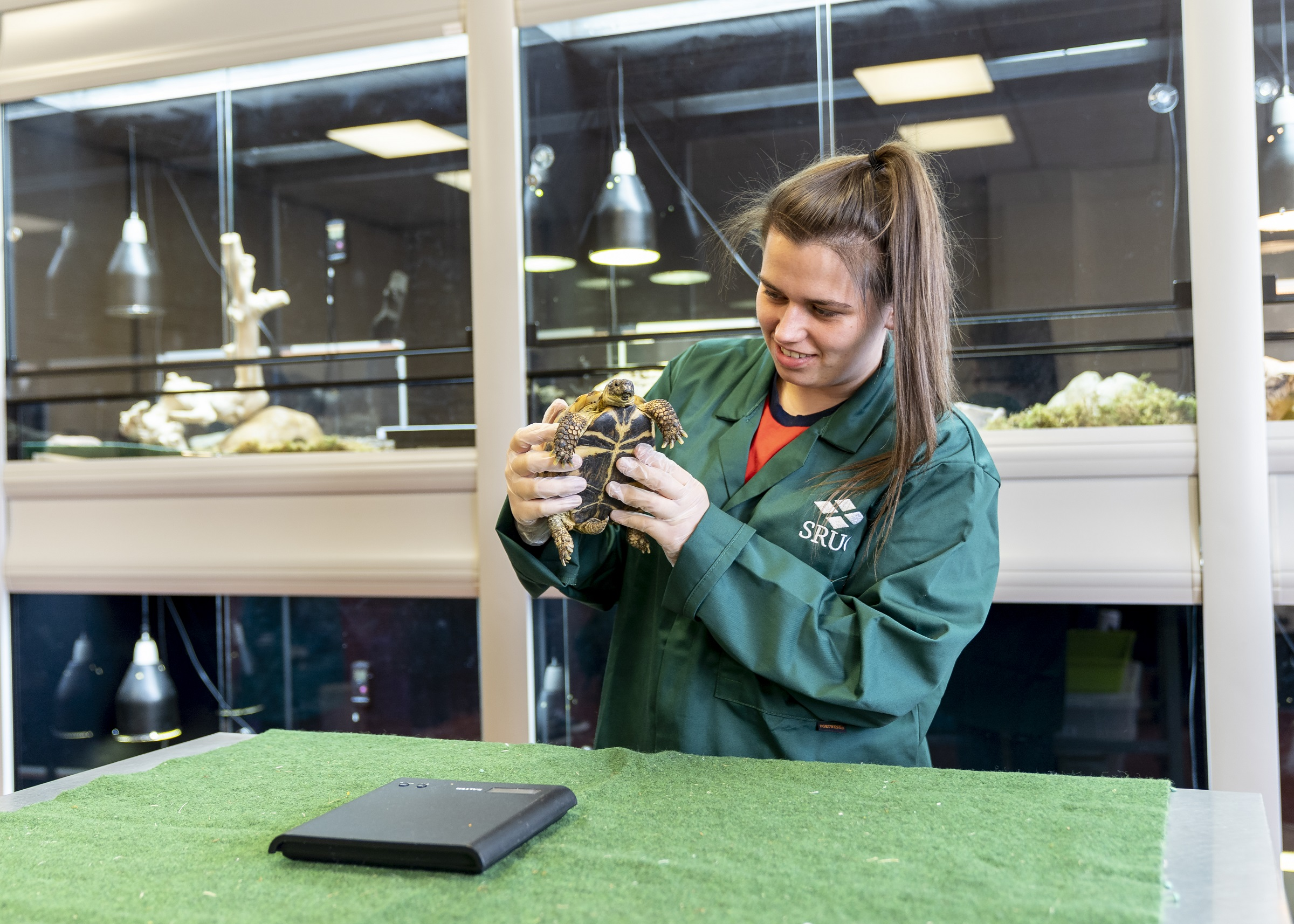 Practical elements in courses, such as animal care, will be delivered on campus.