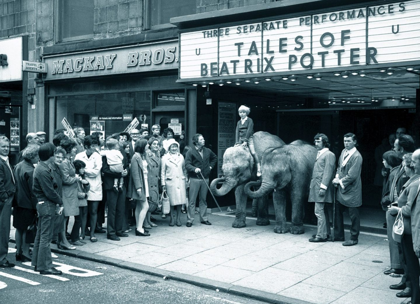 The Robert Brothers Circus baby elephants Maureen and Catzelia caused quite a stir at the ABC Cinema in 1971.
