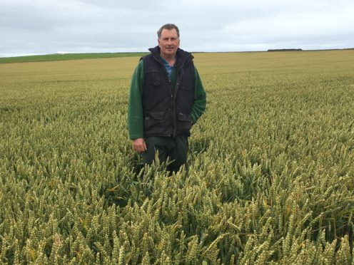 John Gray in his winning crop.