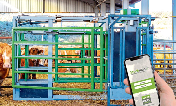 The Stockman system from Herd Advance
