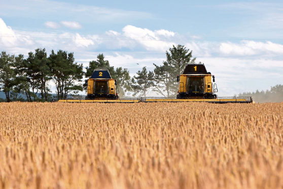 Two New Holland combines cutting a crop of Sunningdale winter barley at Corskie Farm, Garmouth, Fochabers, on July 17, 2020. Pic provided by Laura Beattie from WJ Green.