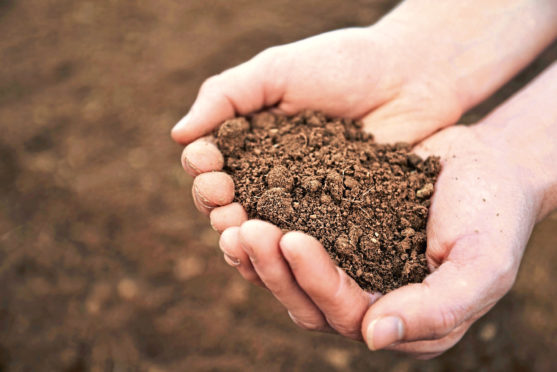 The soil project involves five growers on the east of Scotland using 'very different and interesting methods'.