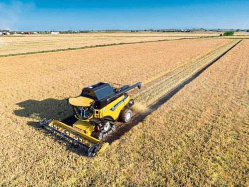 Winter barley and winter oilseed rape yields are down, according to AHDB.