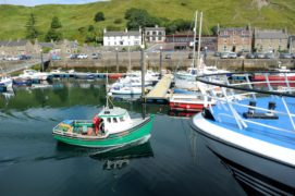 Small fishing vessels and pleasure craft in Scrabster harbour. Picture by Sandy McCook