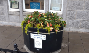 Inverurie High Street (planter outside the Masonic Hall