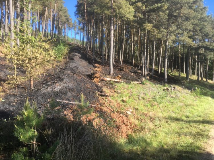 The ground was left severely burned at Pitfichie Forest near Kemnay