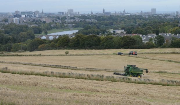 The land that could be developed, overlooking the Bridge of Dee