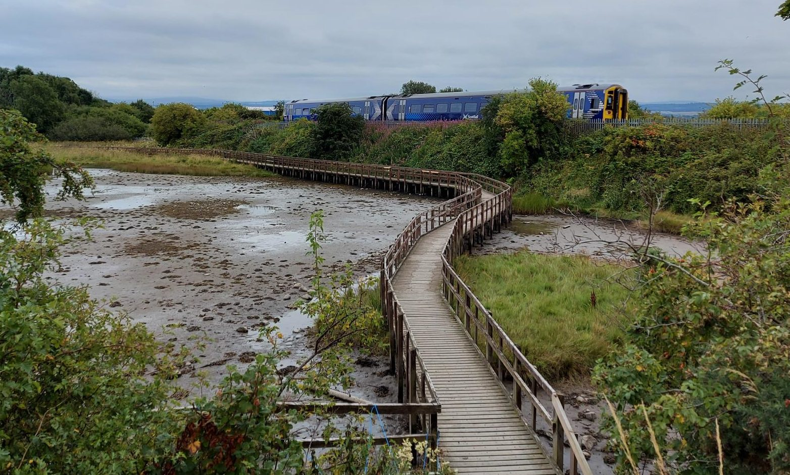 Conservationists are to undertake repairs on the boardwalk to secure its future at the reserve.