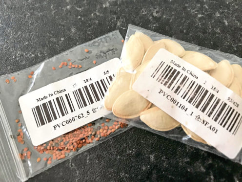Some of the seeds from China.