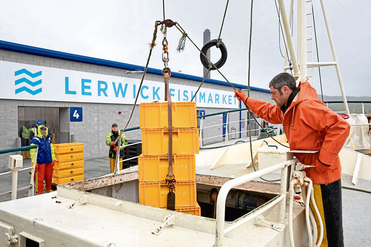 Lerwick Fishmarket receives its first whitefish landings from local vessel Sedulous LK308 overseen by skipper John Wishart._