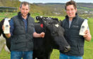 Brothers William (left) and Angus Willis from Forest Farm Dairy, which has received support in the latest round of funding.
