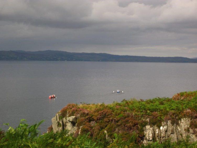 The boats depart Mallaig