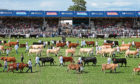 The cornerstone of the Scottish farming calendar - the Royal Highland Show - was unable to go ahead this year due to coronavirus.