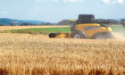 Harvest is progressing well, with three tonnes an acre for spring barley not uncommon.