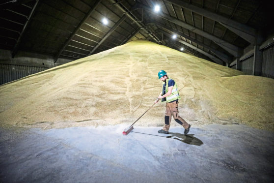Growers are said to be unhappy with the malting barley price this year and are considering a move to growing more wheat.