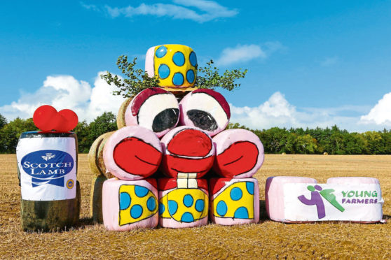 Fields will start to look colourful with the bale art competition.