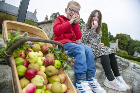 Cameron (5) and Jessica (7) Hawkins at Pitmedden Garden's  drive-through apple harvest. Courtesy Rory Raitt