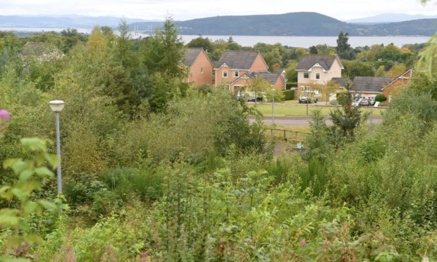 Culloden Woods has been offered for sale to Moray Park residents. Picture by Sandy McCook.