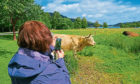 Tourism has become a key diversification for many farm businesses but it has been affected by the recent new rules.