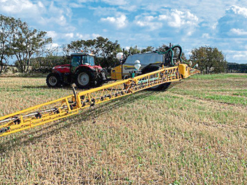 The trial will investigate whether catch crops can deliver the same benefits for soil health as cover crops, in a much shorter time frame.