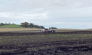 Harvesting potatoes in wet fields in Angus mirrors the picture across much of Scotland.